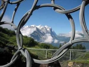 flexible ring net nampak dari dekat