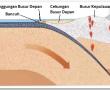 Mengenal Karakteristik Zona Subduksi di Indonesia